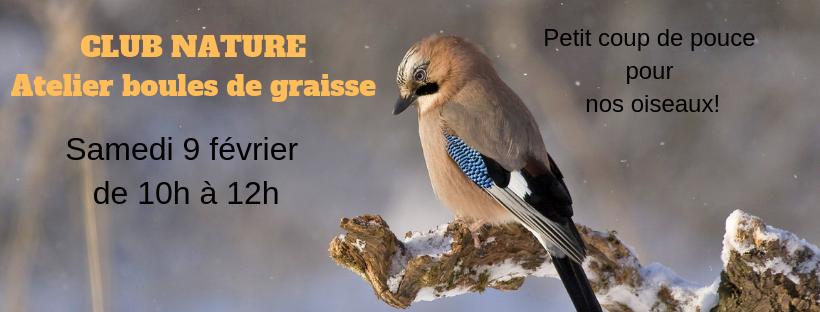 Club nature: atelier boules de graisse pour nos oiseaux